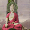 Why Buddha Touched The Earth